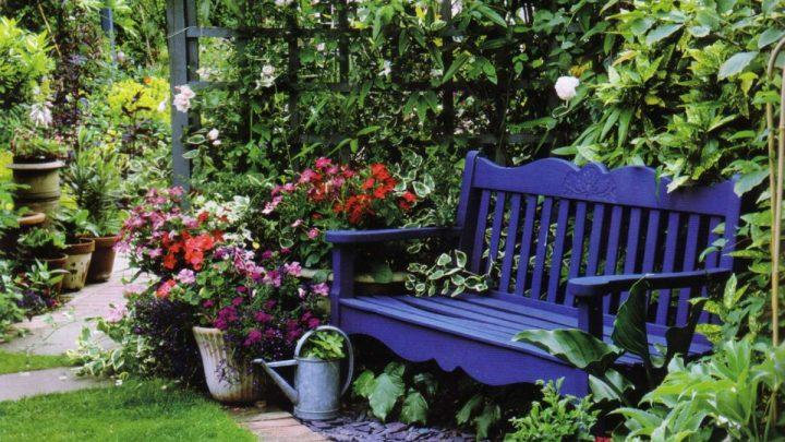 Как сделать лавочку — красивые и необычные варианты изготовления садовых скамеек (135 фото)